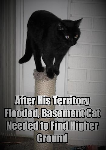 download Flooded Basements
